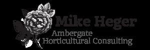 Ambergate Dev Logo